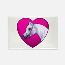 Arabian Horse Heart Rectangle Magnet