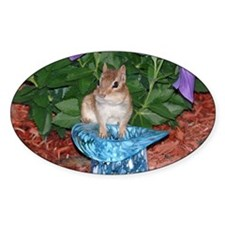 Chester the chipmunk Oval Decal
