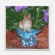Chester the chipmunk Tile Coaster