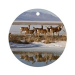 Cluster Ornament (Round)