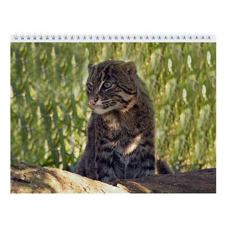 Fishing Cat Wall Calendar