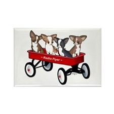 Radio Flyer Chihuahuas Rectangle Magnet
