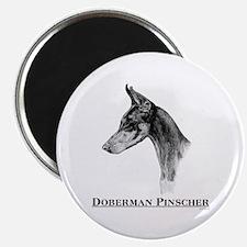 Doberman Pinscher Dobie Dog Breed Magnet