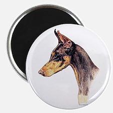 Doberman Pinscher Dobie Dog Portrait Magnet