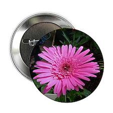 "Cute Flowers color 2.25"" Button (100 pack)"
