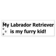 Labrador Retriever Furry Kid Bumper Bumper Sticker