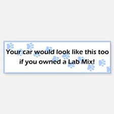 Your Car Lab Mix Bumper Bumper Bumper Sticker