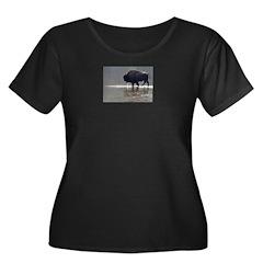 Backlit Bison T