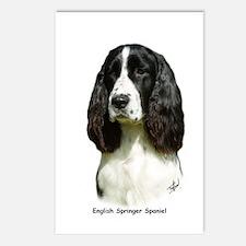 English Springer Spaniel 9J37D-20 Postcards (Packa