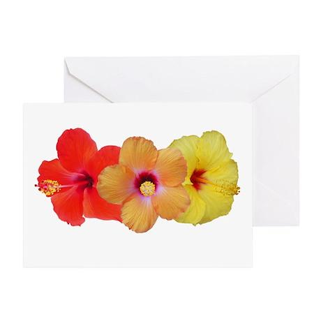 Hibiscus Trio Greeting Card