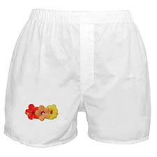 Hibiscus Trio Boxer Shorts