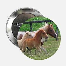 Three Mini Horses Running Button