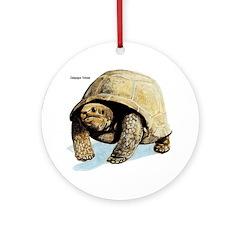 Galapagos Tortoise Keepsake (Round)
