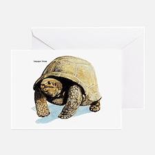 Galapagos Tortoise Greeting Cards (Pk of 10)