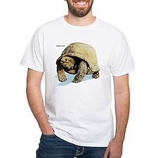 Galapagos Tortoise Shirt