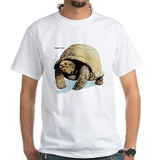 Galapagos Tortoise (Front) Shirt