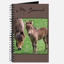 Mini Pinto Filly & Mother Journal