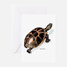 Southern Painted Turtle Greeting Cards (Package of