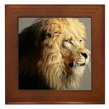 Lion Head Framed Tile
