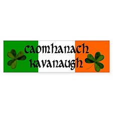 Kavanaugh in Irish & English Bumper Bumper Sticker