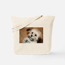Cute Havanese Tote Bag
