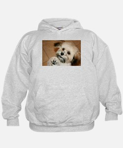 Unique Small Hoody