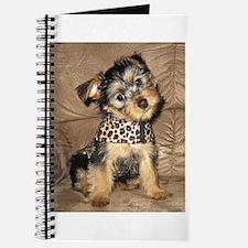 SILKY terrier Dog - Journal