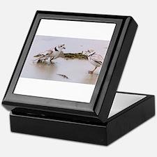 Funny Endangered Keepsake Box