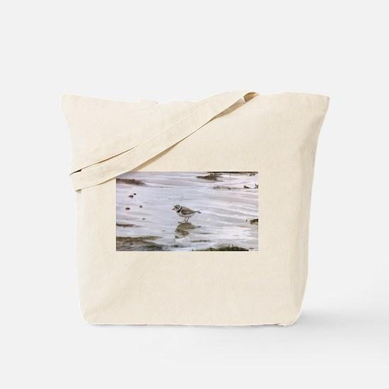 Cute Shorebird Tote Bag
