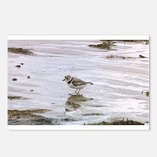 Unique Endangered species Postcards (Package of 8)