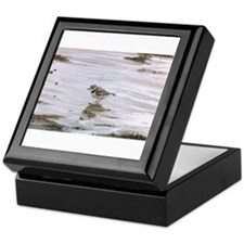 Cute Shorebird Keepsake Box