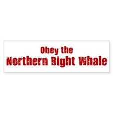 Obey the Northern Right Whale Bumper Bumper Sticker