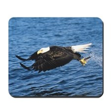 On The Fly Mousepad