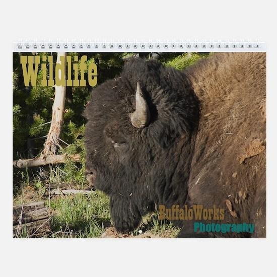 Unique Buffalo Wall Calendar