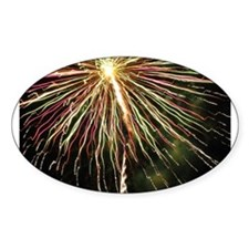 Fireworks Oval Decal