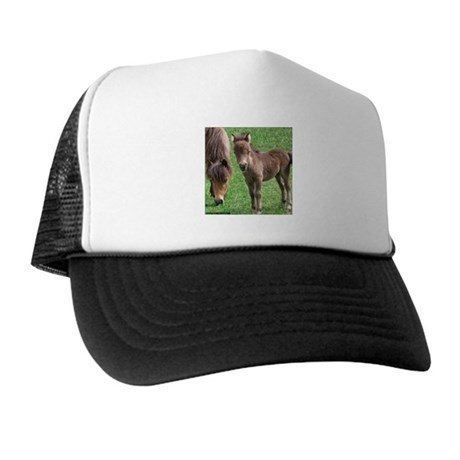 Mini Pinto Filly & Mother Trucker Hat