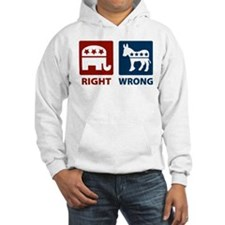 Anti Democrats: Right/Wrong Hoodie