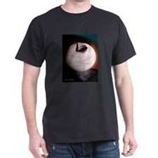 """""""Bowl of ice and swan"""" T-Shirt"""