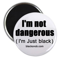 Not Dangerous Magnet