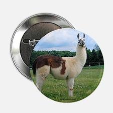 Sunwoods Farms Llama Button