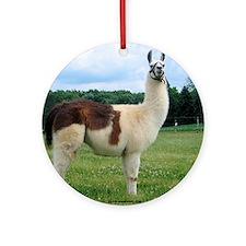 Sunwoods Farms Llama Keepsake (Round)