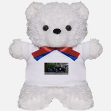 XK Special Teddy Bear