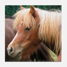 Classic Mini Horse Portrait Tile Coaster