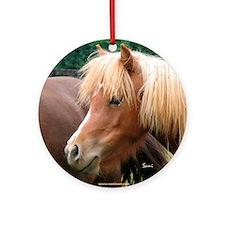 Classic Mini Horse Portrait Keepsake (Round)