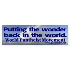 """Putting the wonder"" Bumper Sticker"
