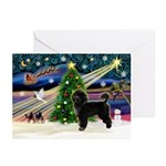 XmasMagic/PWD Greeting Cards (Pk of 20)