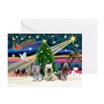 Xmas Magic/Skye Trio Greeting Cards(Pk of 10)