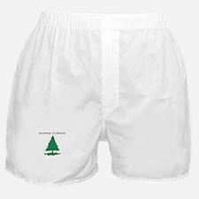 Washington's Cruisers Flag Boxer Shorts