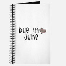 June Journal