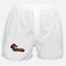 Chocolate Dapple Dachshund Boxer Shorts